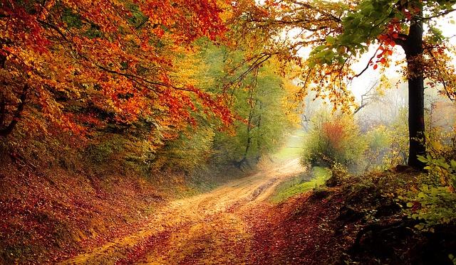 Jesień - walka z trądzikiem