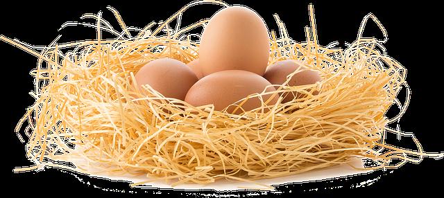 Właściwości jajek
