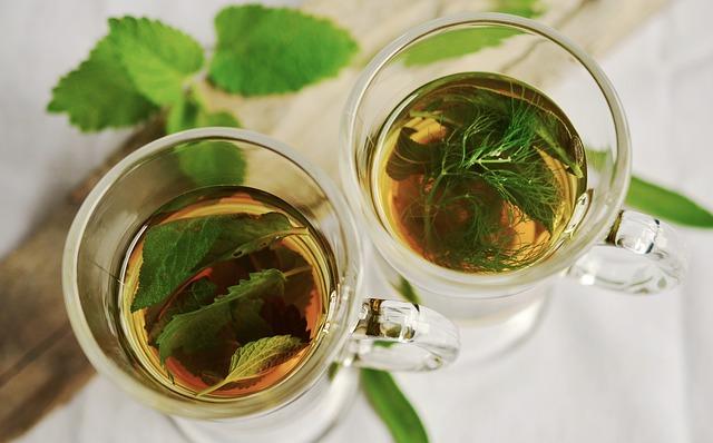 rośliny wspomagające detoksykacje organizmu