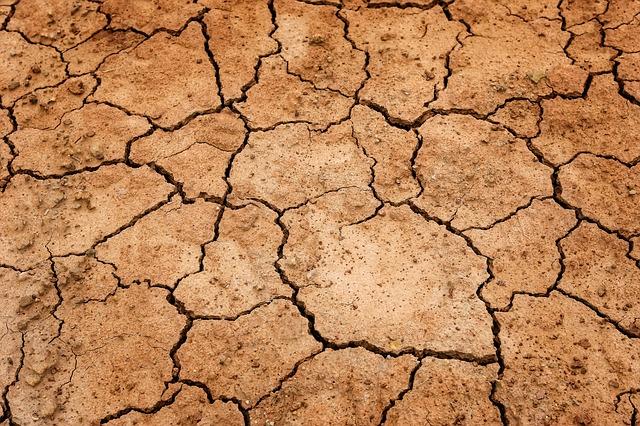 Sposoby na suchą skórę
